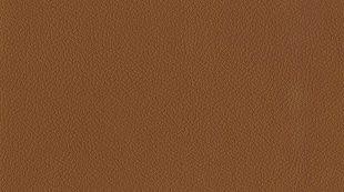 Pruuni värvi nahk